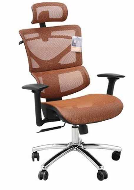 mesh 3D ergo office chair with headrest